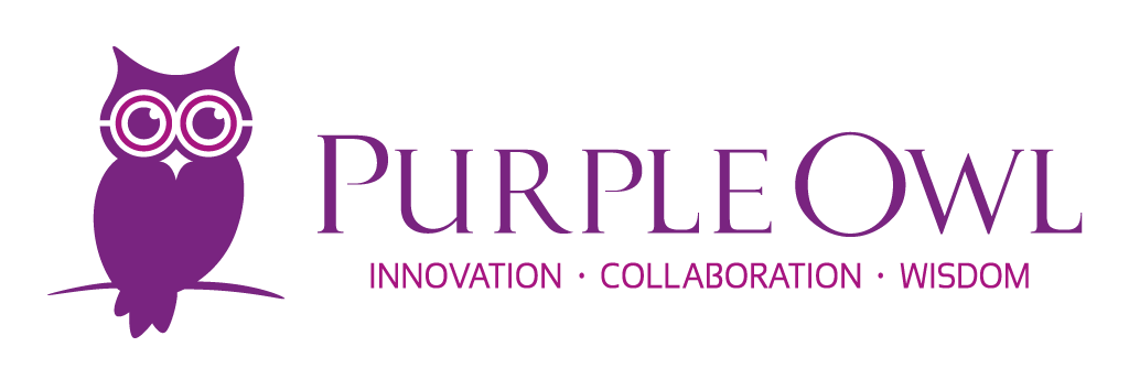Purple Owl Consulting